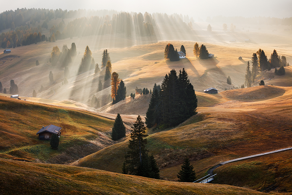 © Martin Rak, 1. místo, Czech Republic National Award, 2016 Sony World Photography Awards