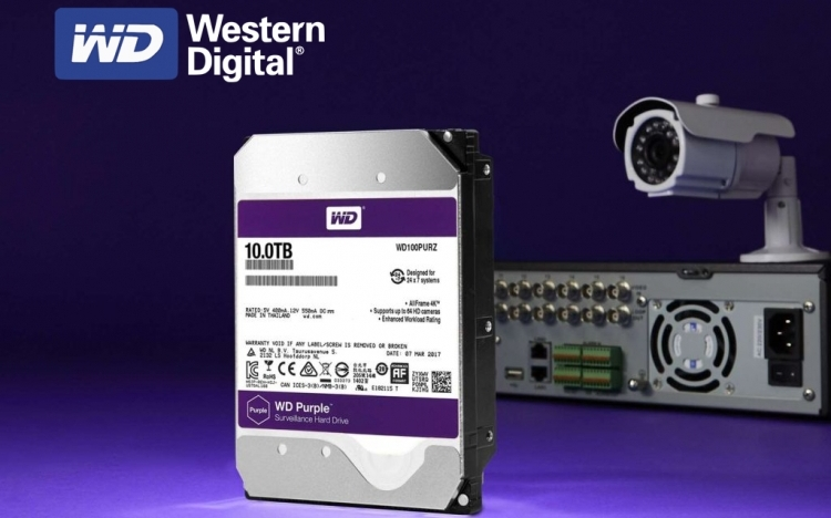 graphic-wd-purple-1.jpg