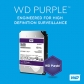 graphic-wd-purple.jpg