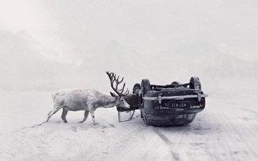 Martin Stranka, UNTIL YOU WAKE UP